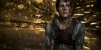"""Donde interpreta a """"Thomas"""", el protagonista de esta historia inspirada en los libros de James Dashner Foto:IMDB. Imagen Por:"""