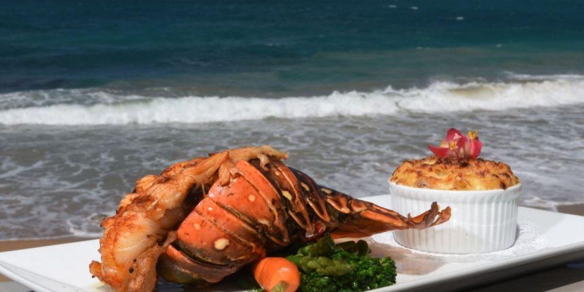 El deleite de los frutos de mar