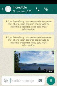 En días pasados conocimos la nueva opción para aumentar la seguridad en sus conversaciones. Foto:WhatsApp Translate. Imagen Por:
