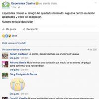 El refugio de la Fundación Esperanza Canina quedó destruido por el terremoto. Foto:Facebook. Imagen Por: