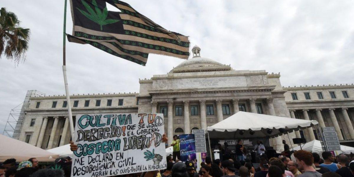Respaldan proyecto de reducir penas por consumo de marihuana
