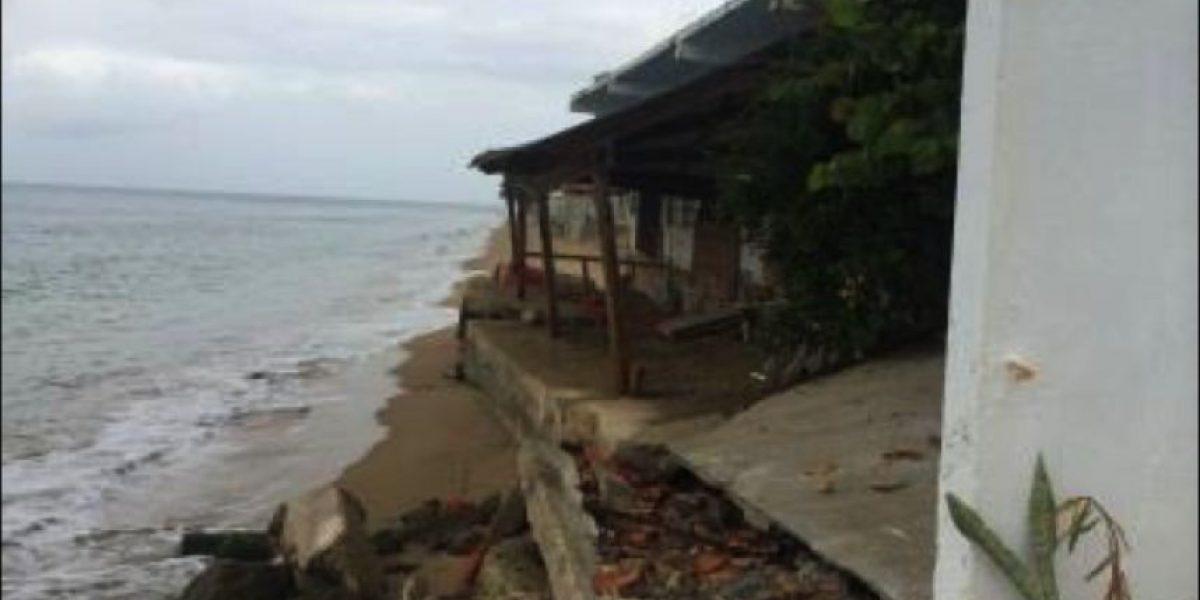 Retratan efectos del cambio climático en Rincón