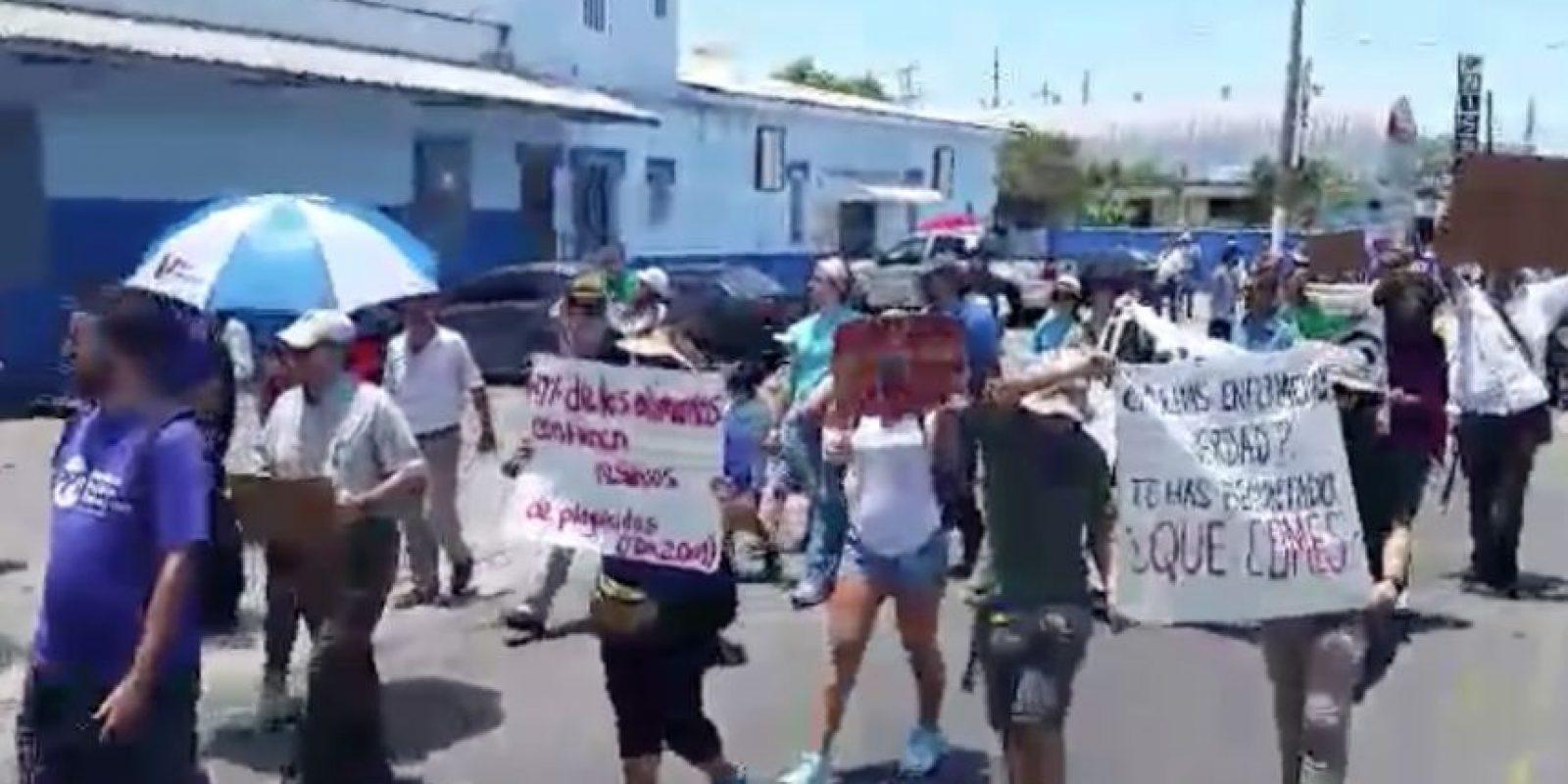 Manifestación en Ponce contra de Monsanto. Foto:Facebook. Imagen Por: