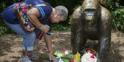 """El asesinato de """"Harambe"""" causó indignación en redes sociales Foto:AP. Imagen Por:"""