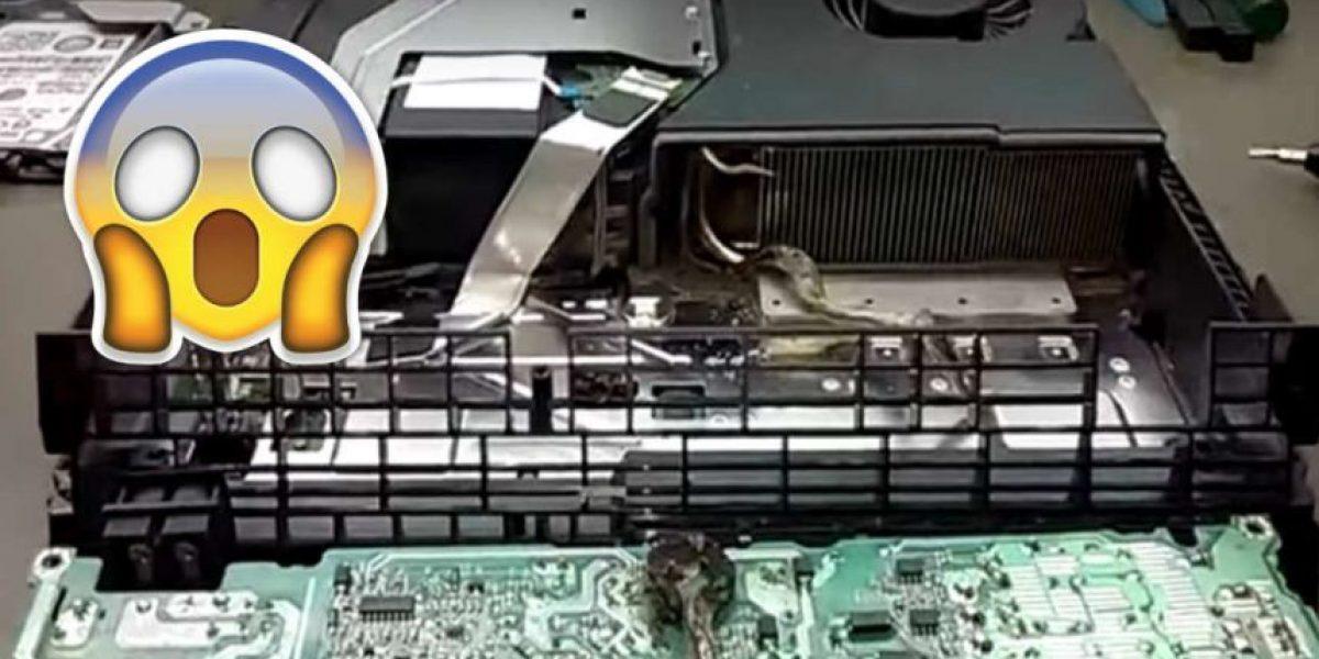 Joven lleva a reparar su PS4 y lo que halló fue sorprendente