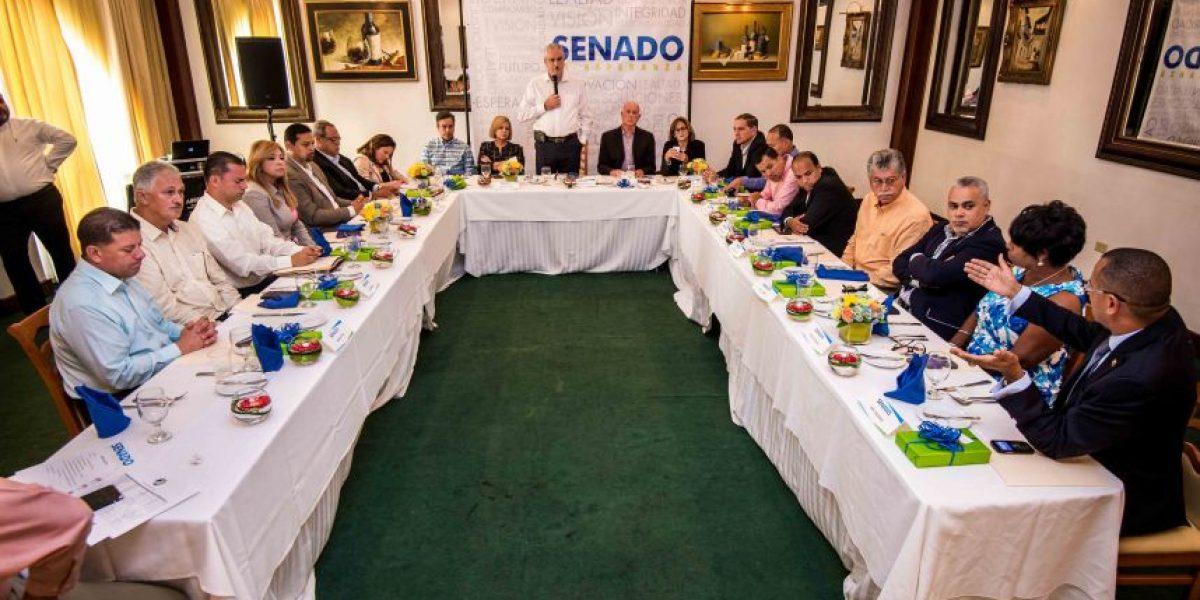 Rivera Schatz organiza su Senado