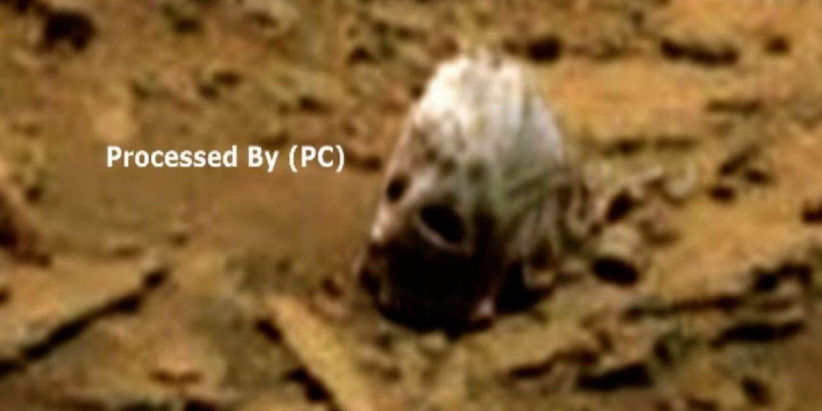 También hay quien alega que no es más que una piedra. Foto:Paranormal Crucible. Imagen Por:
