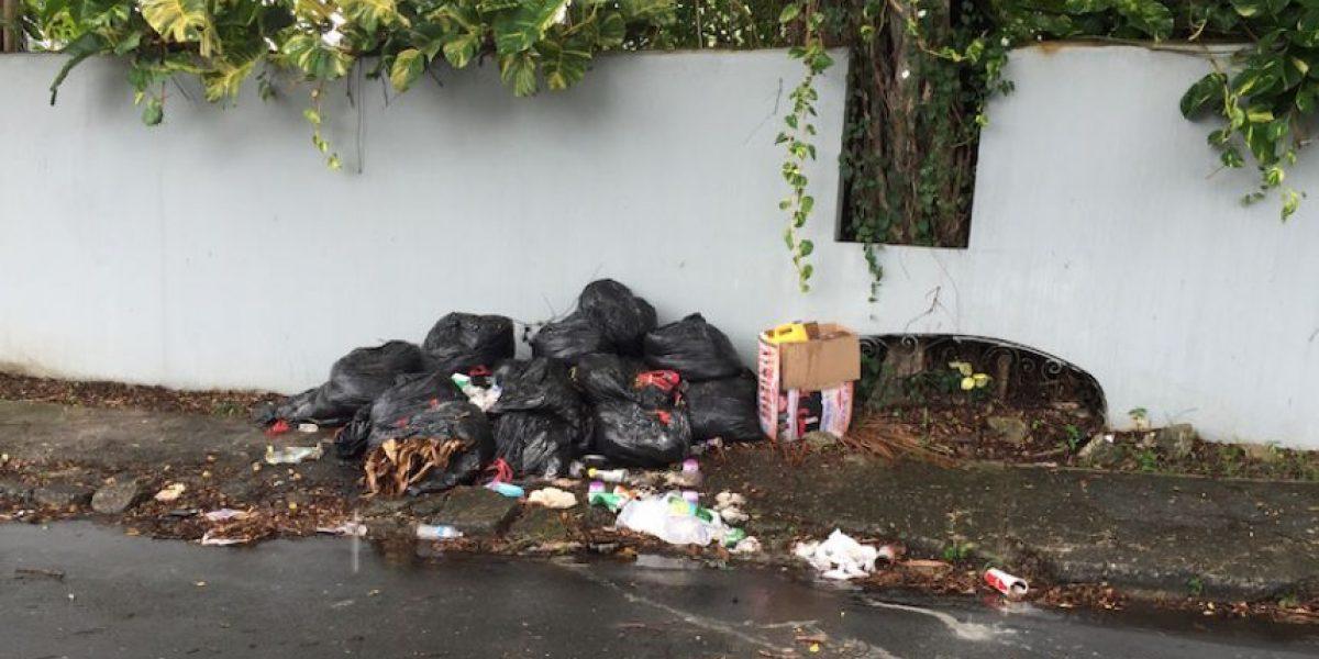 Denuncian grave problema de basura en Guaynabo