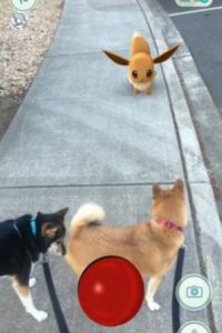 Frente a máscotas. Foto:Nintendo. Imagen Por: