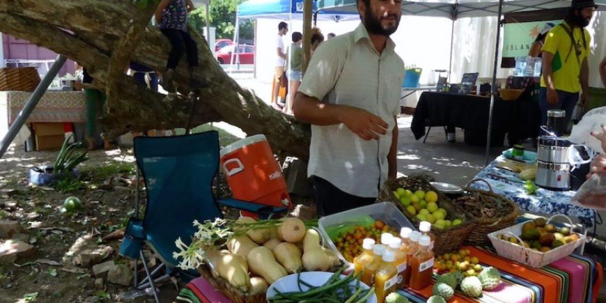 Frutos exóticos en mercado sabatino en la calle Aurora de Ponce