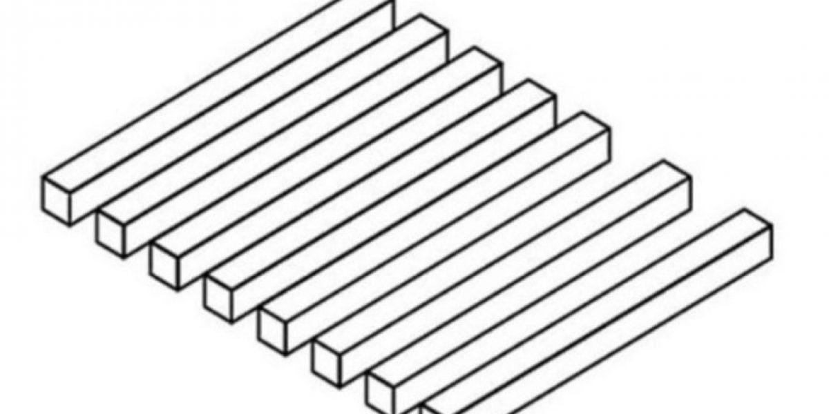 Esta ilusión óptica confunde a las redes sociales