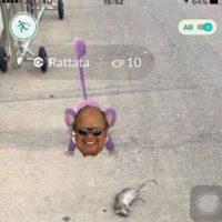 Rattatas por todos lados. Foto:vía Twitter. Imagen Por: