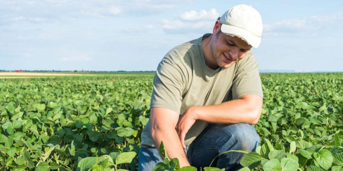 Avalan modelo cooperativo para impulso agrícola en P. R.