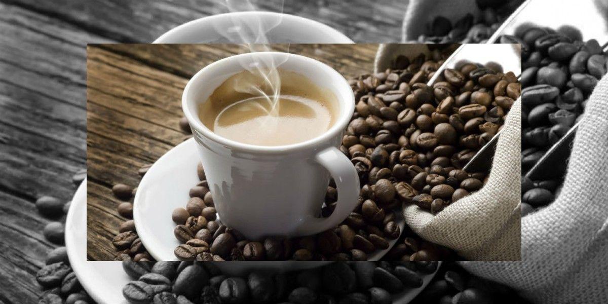 En picada la producción de café puertorriqueño