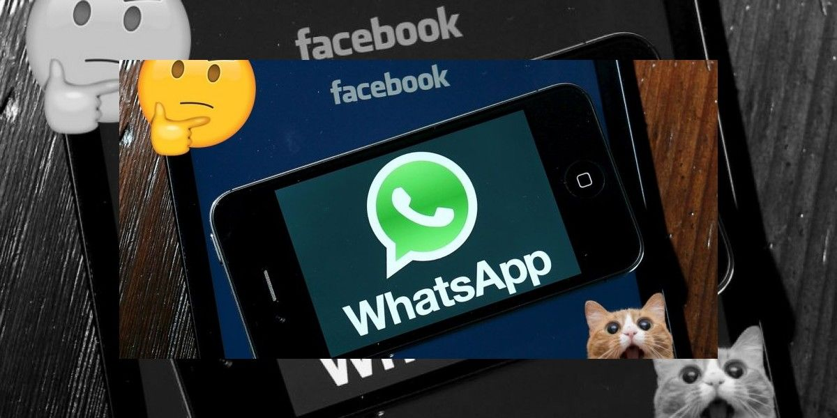 WhatsApp: Guía para usar todas sus nuevas funciones