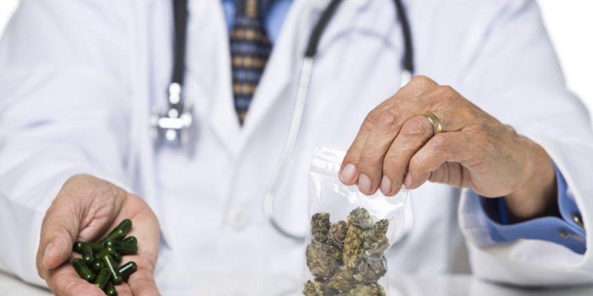 Salud regalará certificaciones de consumo de cannabis medicinal