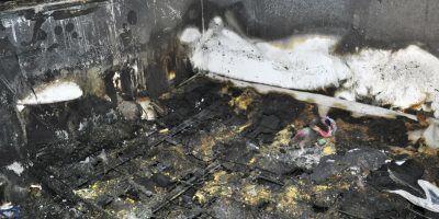 Un niño murió en un incendio acompañado de su perro que lo protegía. Imagen Por: AP