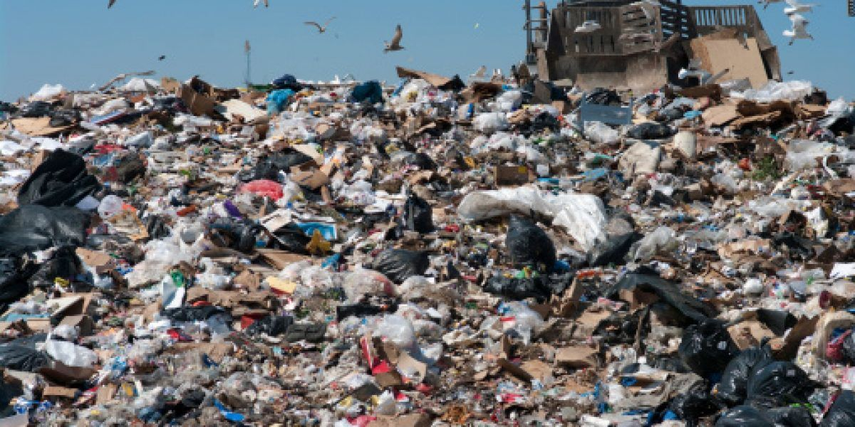 Millonaria demanda contra alcalde por incumplimiento con empresa de recogido de basura