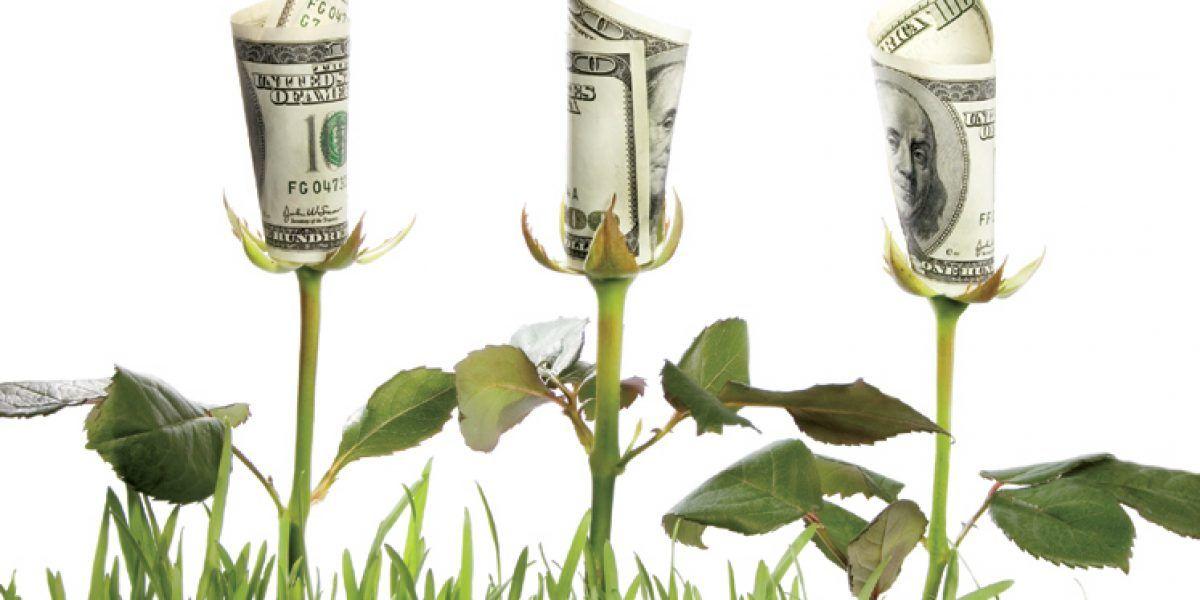 Celebrarán Congreso de Economía Ecológica en el RUM