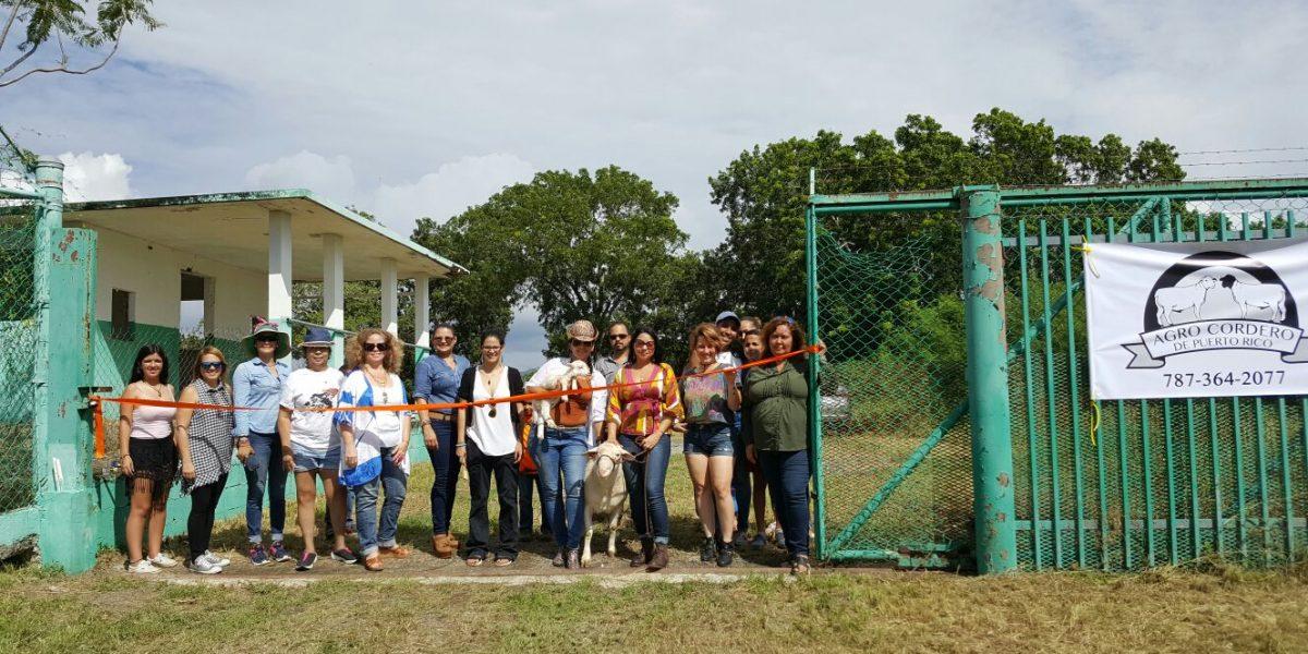 Surge Agro-Cordero de Puerto Rico en Guánica
