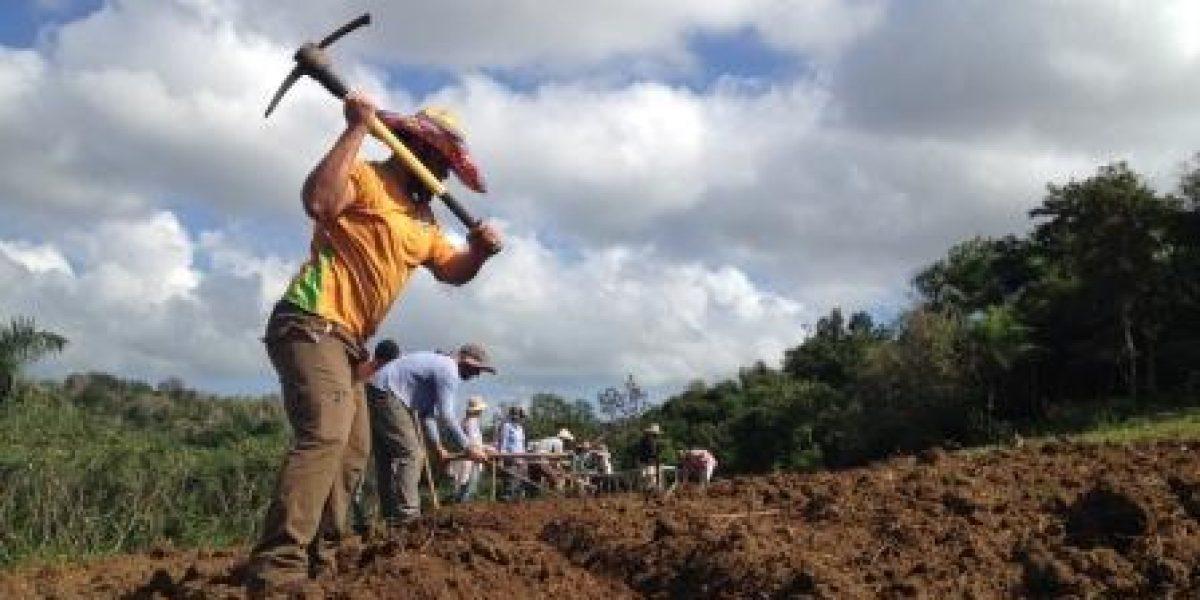 Contrapropuesta agrícola ante el Viernes Negro
