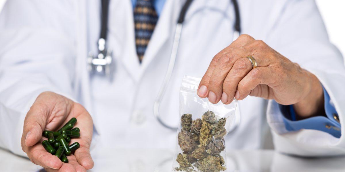 La aportación del cannabis a la salud