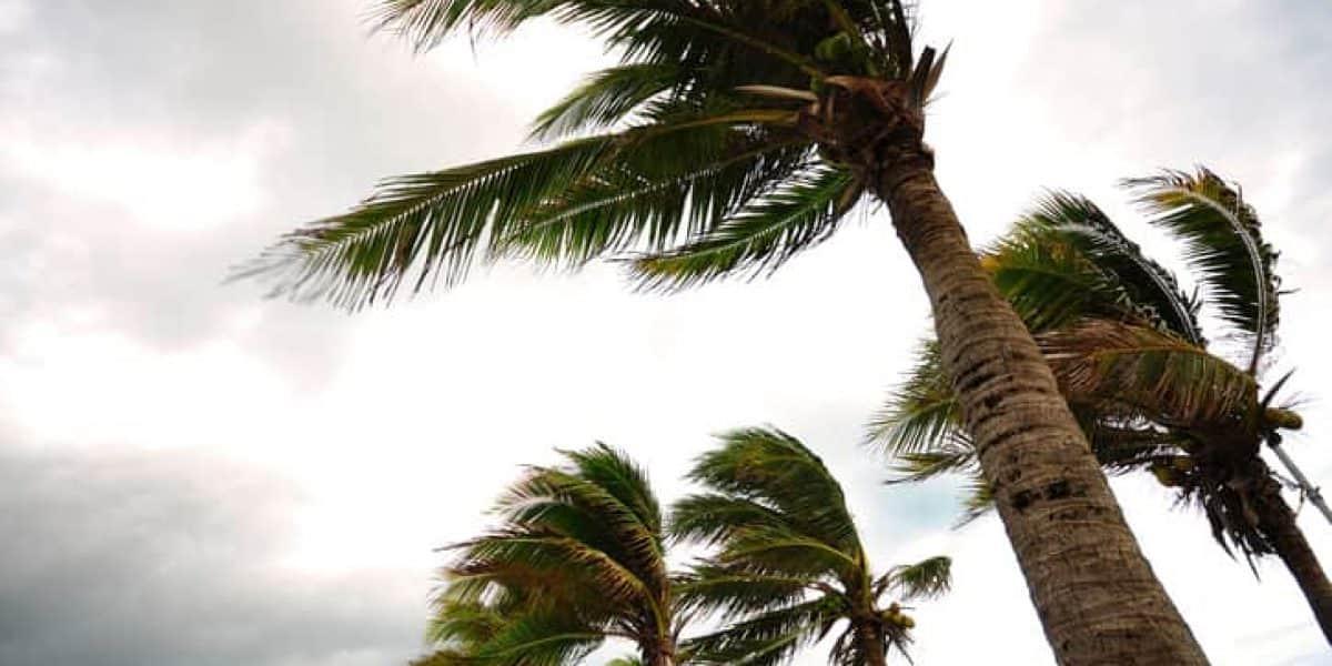 Otto se degrada a huracán tipo 1 al cruzar Nicaragua
