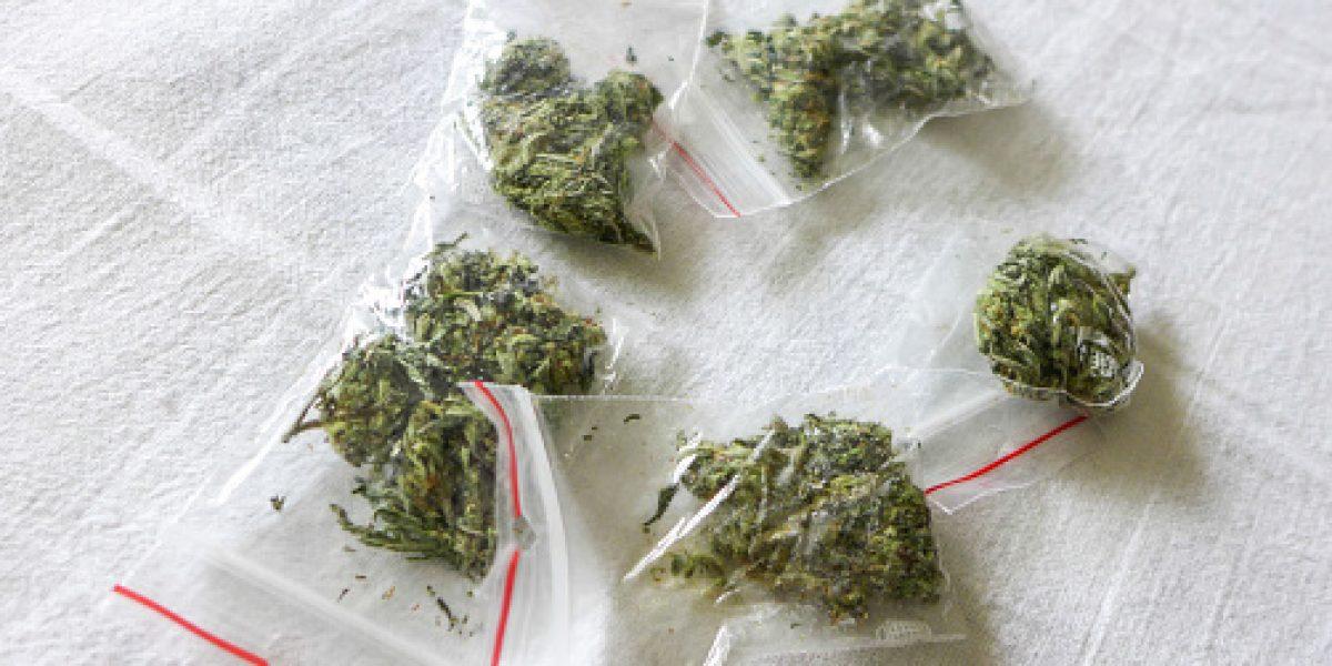 Hallan 256 bolsas con marihuana a orillas de una carretera