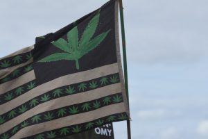 Aseguran dinero del cannabis puede depositarse en bancos