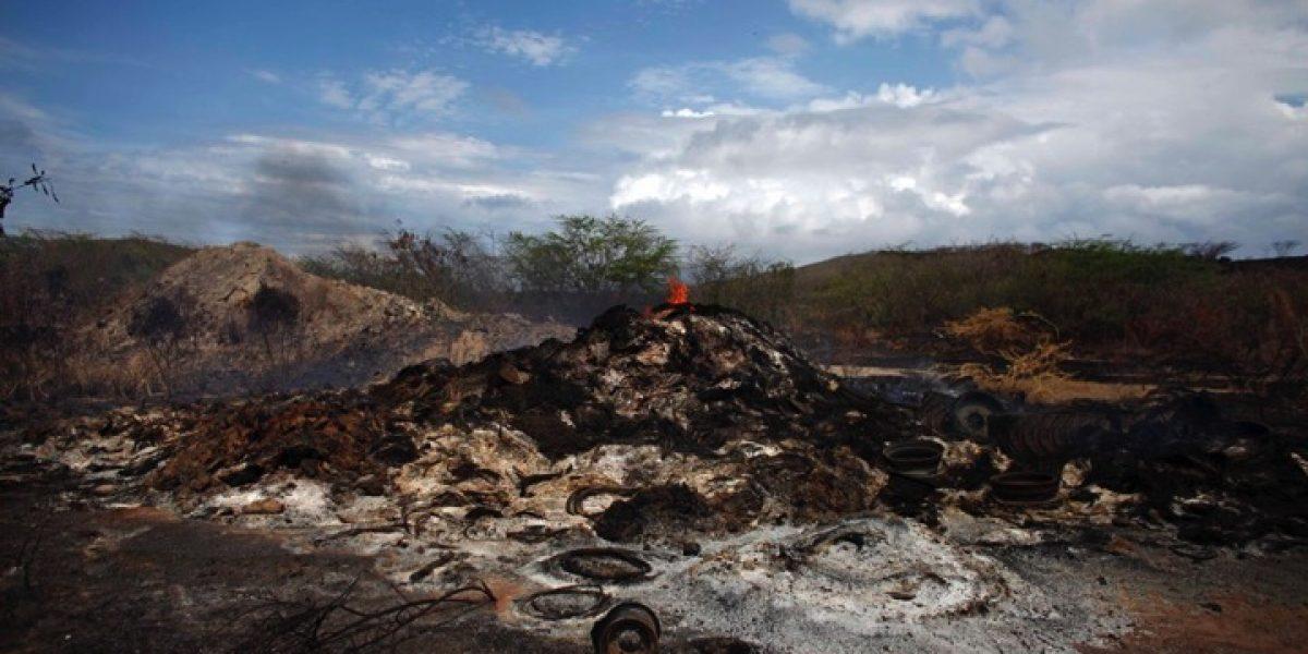 Viequenses exigen a la Marina detener quema de vegetación