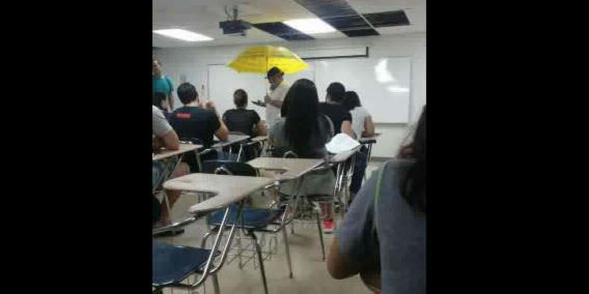 Profesor universitario usa sombrilla para dar clase