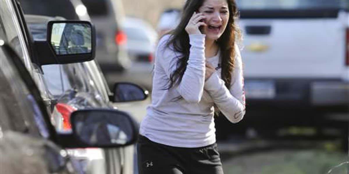 Se cumplen 4 años de la matanza en primaria Sandy Hook