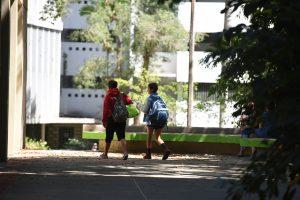 Decretan paro en dos de los 11 recintos UPR