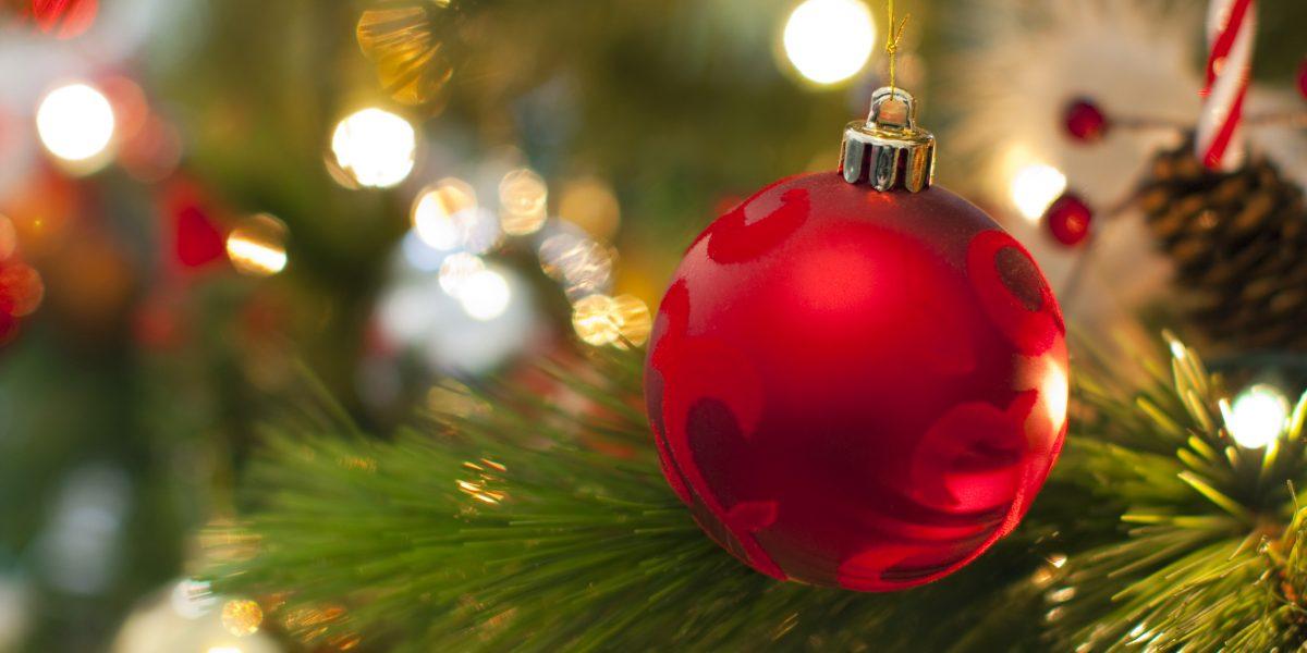 Exhortan a reciclar árboles de Navidad