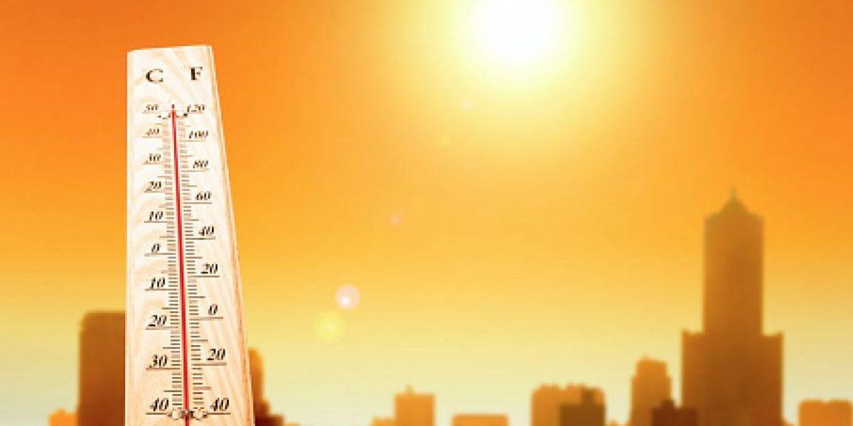 2016 fue el año más caluroso