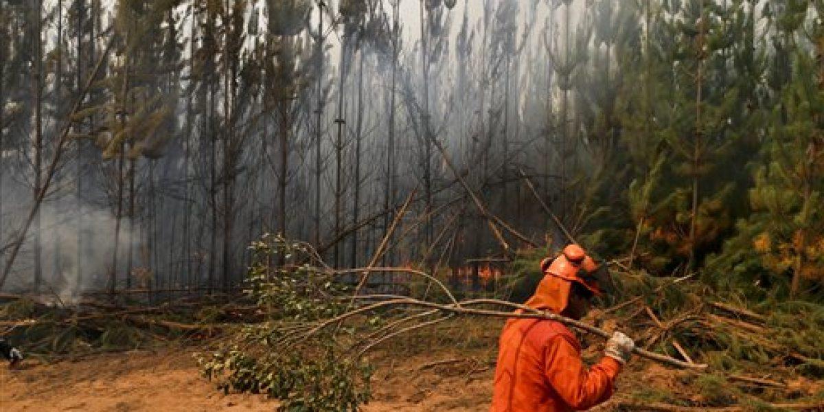 Arden incendios forestales en Chile y Argentina