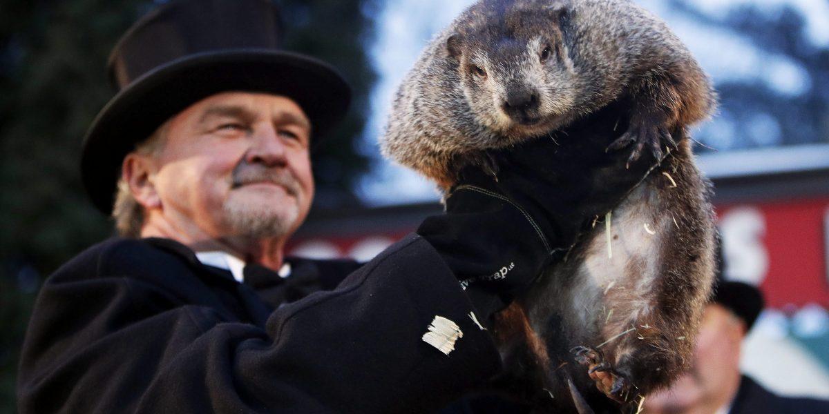 Marmota meteoróloga predice un invierno largo