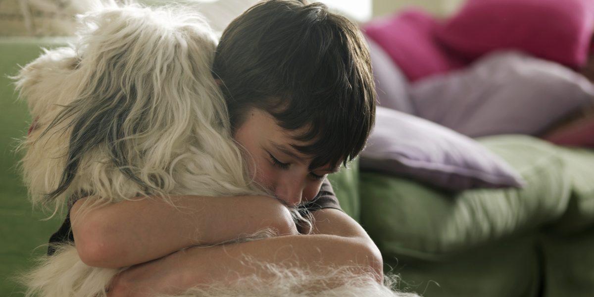 Lanzan aplicación puertorriqueña para amantes de mascotas