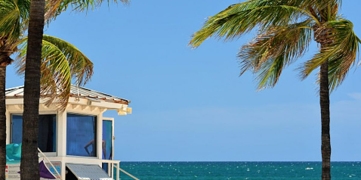 Detienen en Palm Beach a boricua por fraude millonario a constructora