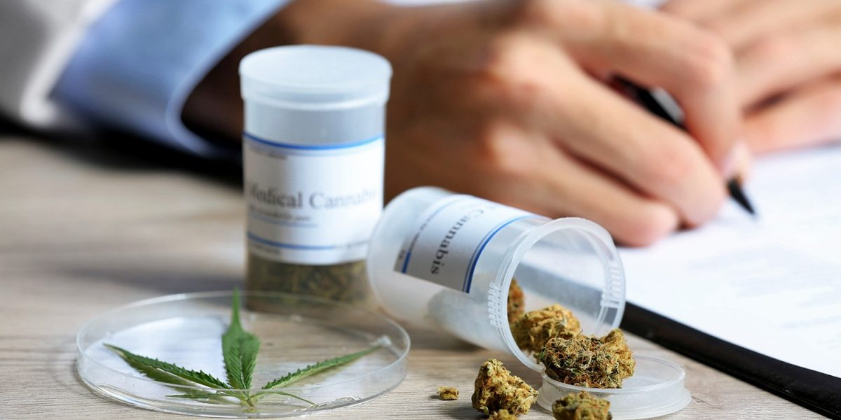 Emitirán certificados para cannabis medicinal en Carolina