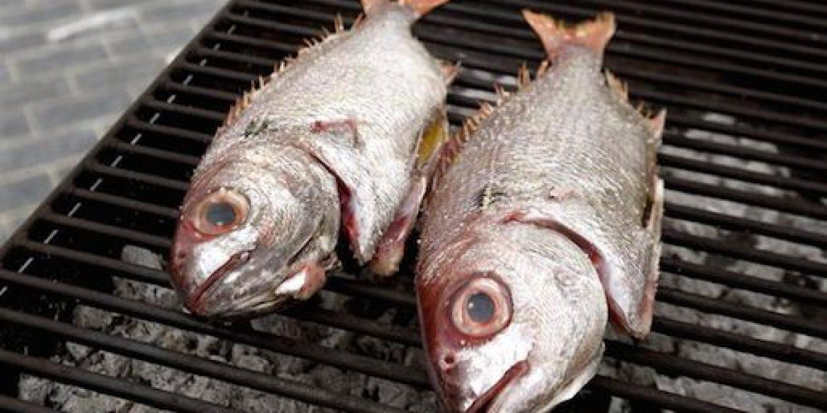 Comer pescado con mercurio podría aumentar riesgo de esclerosis
