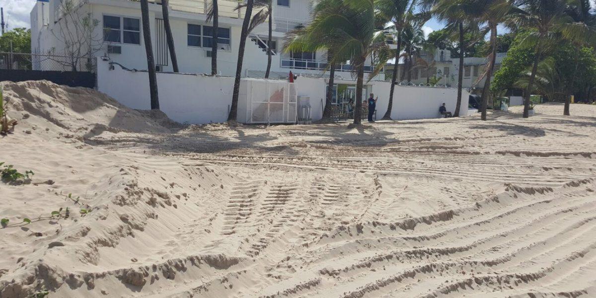 DRNA niega haber afectado dunas o áreas de anidaje de tortugas en limpieza en Ocean Park