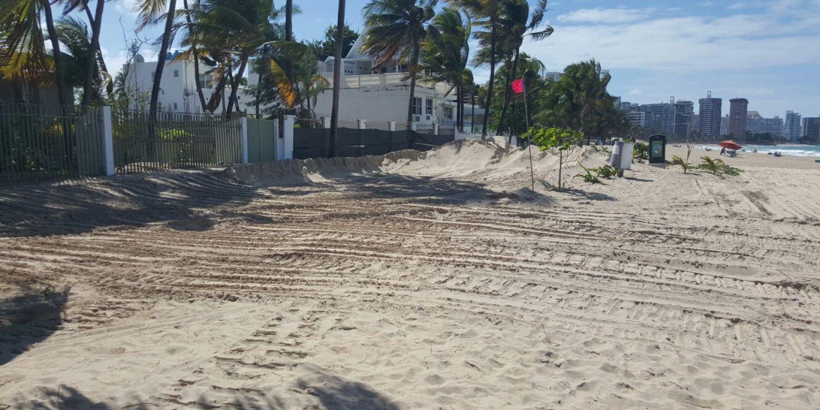 playa tortugas