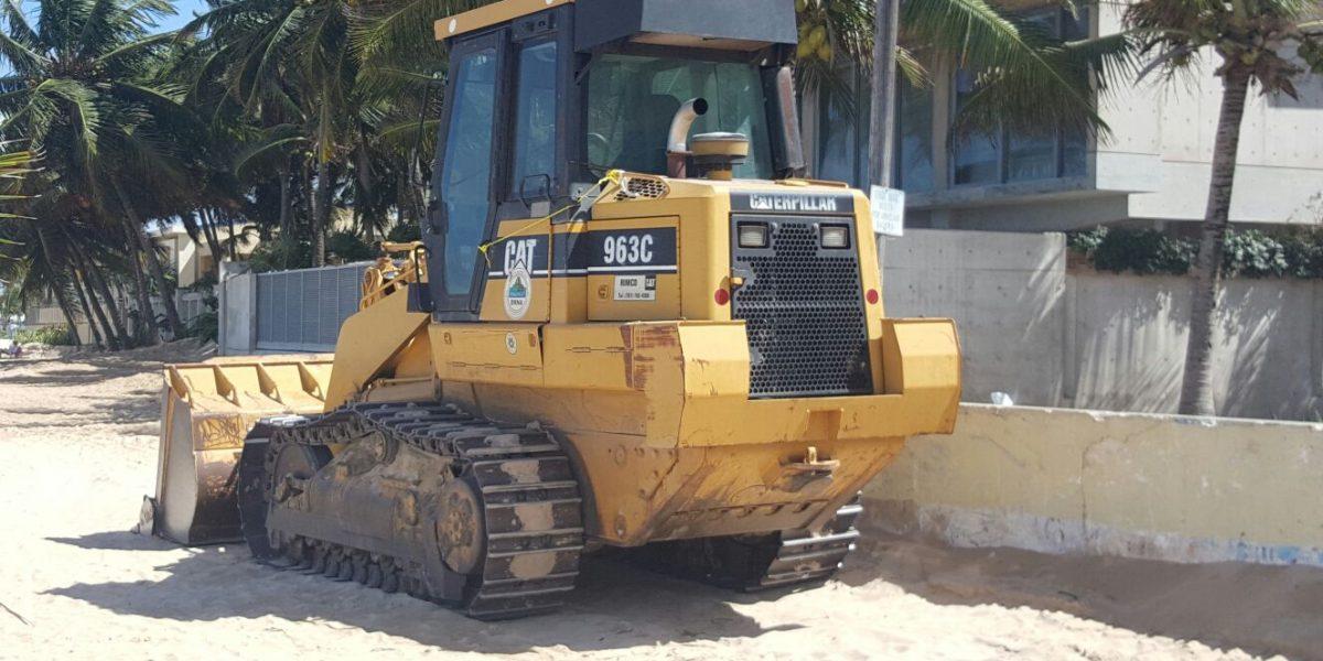 Condenan destrucción de dunas que afectaría anidaje de tinglares