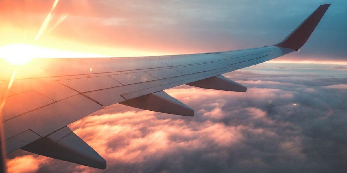 Culebra suelta causa conmoción en avión