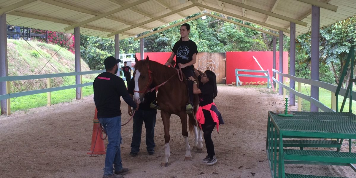 Integran caballos en terapias contra varios padecimientos