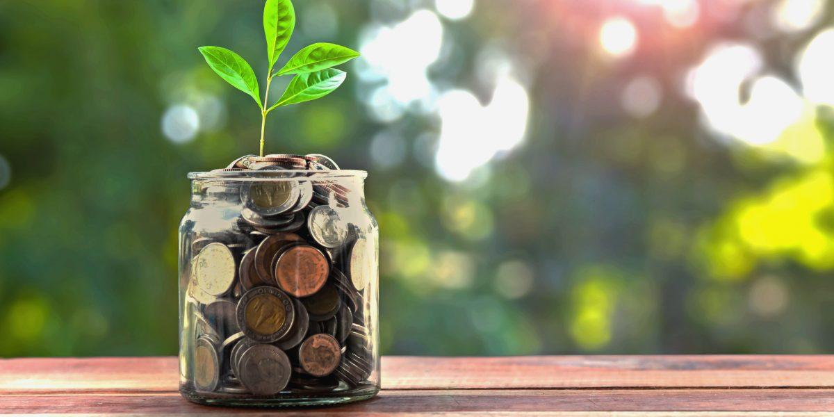 Cuentas IRA: Alternativa de ahorro en tiempos de crisis