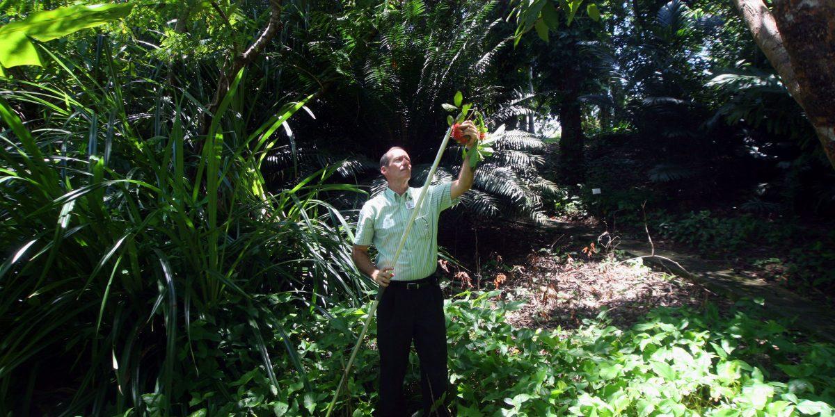 Organizan evento para promover el agroturismo en Puerto Rico