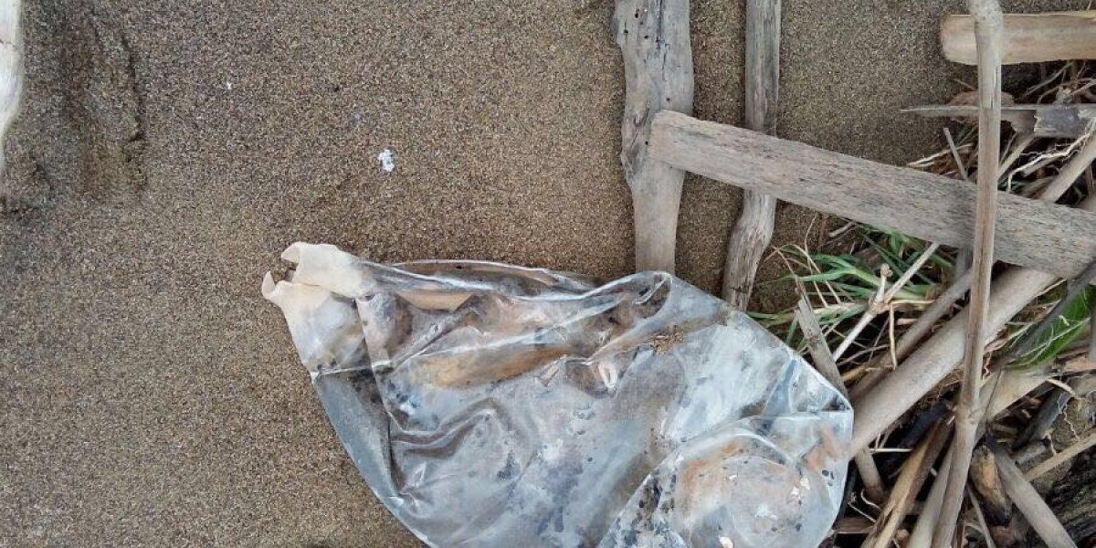 Encuentran más desperdicios biomédicos en reserva natural de Mayagüez