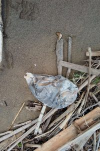 Encuentran más desperdicios biomédicos en reserva natural de Mayagüez/ suministrada